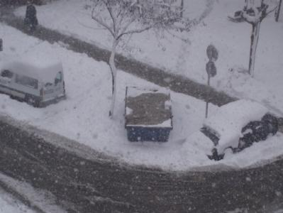 Ohh!! blanca ... primavera???